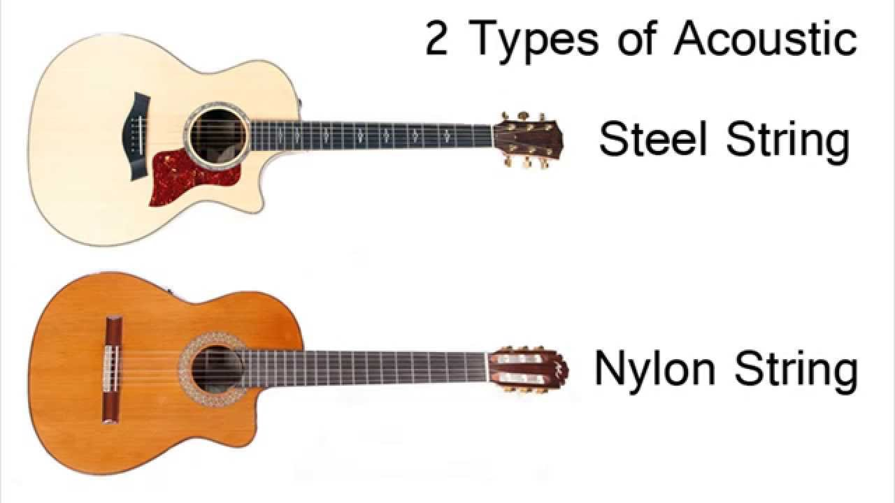 Acoustic Guitar Anatomy Youtube