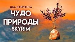 Skyrim   Два варианта прохождения Чудо природы + уникальный кинжал Крапивник!