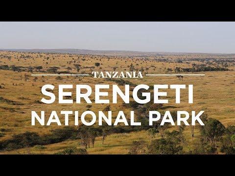 Serengeti National Park, Tanzania | Safari365