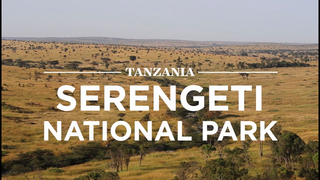 Serengeti National Park >> Serengeti National Park Tanzania Safari365 Youtube