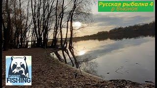 Русская рыбалка 4 Река Вьюнок Вечерняя рыбалка НЕ ЗА РЫБОЙ А НА РЫБАЛКУ Стрим Прямой эфир ВПК