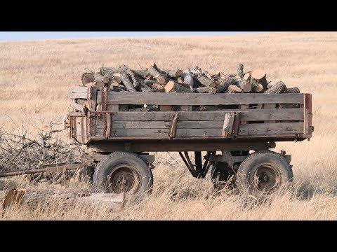 В Ольховском районе проверяют законность вырубки леса