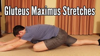 Gluteus Maximus Stretches: Glute stretching