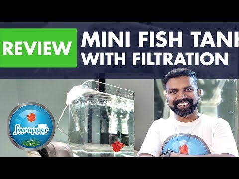 Mini Fish Tank With Filtration For Betta Fish By Petzlifeworld