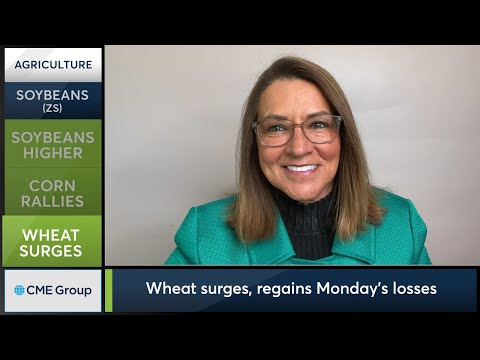May 5 Grains Commentary: Virginia McGathey