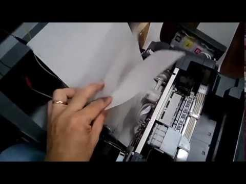 EPSON Paper feed problem multiple output repair