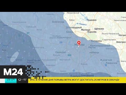 Синоптики дали прогноз погоды на 9 августа - Москва 24