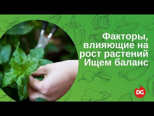№44 Факторы, влияющие на рост растений. Как найти баланс?