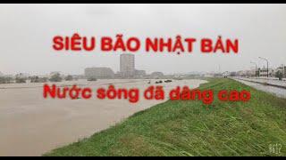 VLOG3.SIÊU BÃO NHẬT BẢN/ HAGIBIS TYPHOON/ NƯỚC SÔNG ĐÃ DÂNG CAO/台風19号ハギビス-多摩川の水が越水しそう警戒レベル5発令