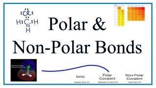 Polar and NonPolar Molecules: Animations, Examples, and Practice