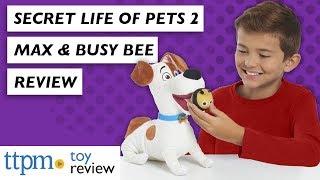 Таємне життя домашніх тварин 2 рухатися і спілкуватися максимум з бджілками від просто грати