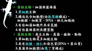 基生1 2 14原核細胞與真核細胞比較一信g