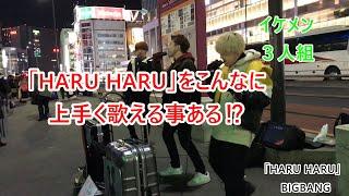 【路上ライブ】HARU HARUーBIGBANGー【歌いだしからイケメン過ぎる】
