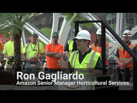 First look inside the Amazon Spheres and ceremonial first planting