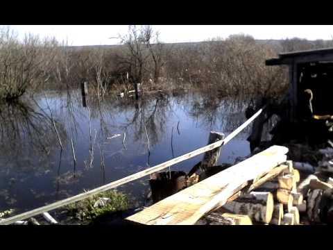 паводок с. Исетское 2016