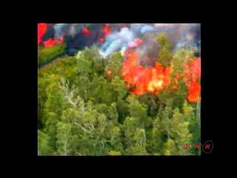 Hawaii Volcanoes National Park (UNESCO/NHK)