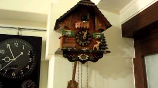 Cuckoo Clock Break Down - How To Fix It