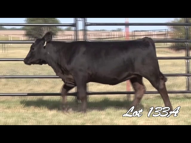 Pollard Farms Lot 133A