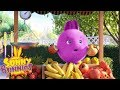 Cartoons for Children | SUNNY BUNNIES - FRUIT STALL | Funny Cartoons For Children
