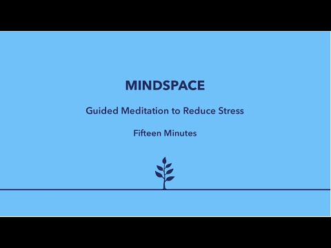 MEDITATION - 15 Minute Guided Meditation to Reduce Stress