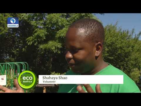 Eco@Africa: Tanzania Farmer Volunteers To Work In An Organic Farm In Germany