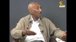 esat news analysis about sebhat nega and welkait tsegede 19 nov 2014