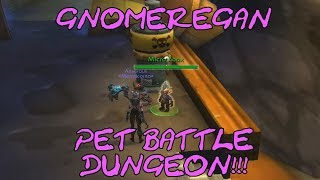 WoW Gnomeregan Pet Battle Dungeon Normal Mode Playthrough with funny ...