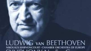Beethoven - Symphony No. 5 in C minor: I. Allegro con brio