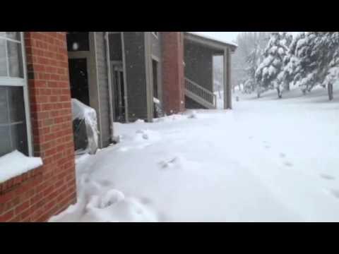 """West Des Moines, Iowa 12"""" Snowfall 1/31/15"""