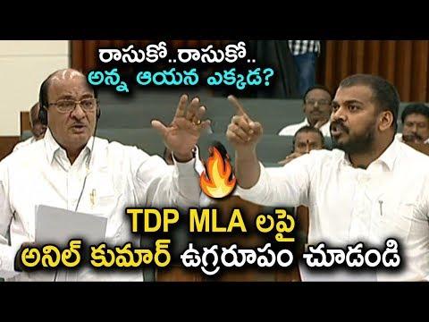 Minister Anil Kumar Yadav fires on TDP MLA Buchayya Chowdary in AP Assembly | YSRCP