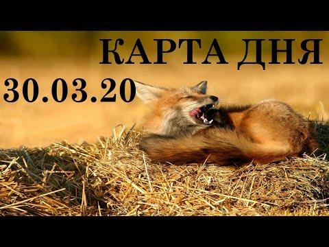 КАРТА ДНЯ 30 МАРТА ТАРО ГОРОСКОП