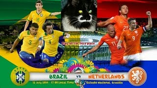 Brazil vs Netherlands: Vitek the cat prediction (World Cup 2014)