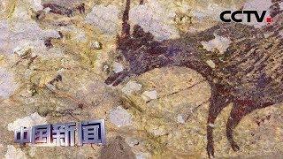 [中国新闻] 考古学家在印尼发现迄今已知最古老岩画   CCTV中文国际