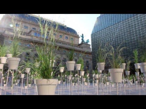 Victoria pragensis | botanical labyrinth in Prague