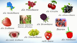 Ягоды на немецком. Учим названия ягод на немецком