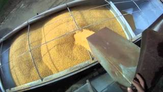 Loading Semi Hopper Bottom with Corn and Hauling to Ethanol Plant 11-3-2011