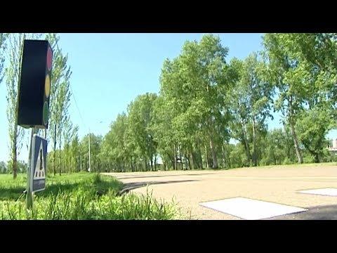 В Красноярске открыли пешеходный переход для сусликов
