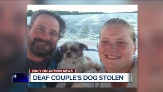 deaf couple s dog stolen from inkster store