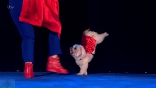 Britain's Got Talent 2016 Finals Trip Hazard & Lucy Full Performance S10E18