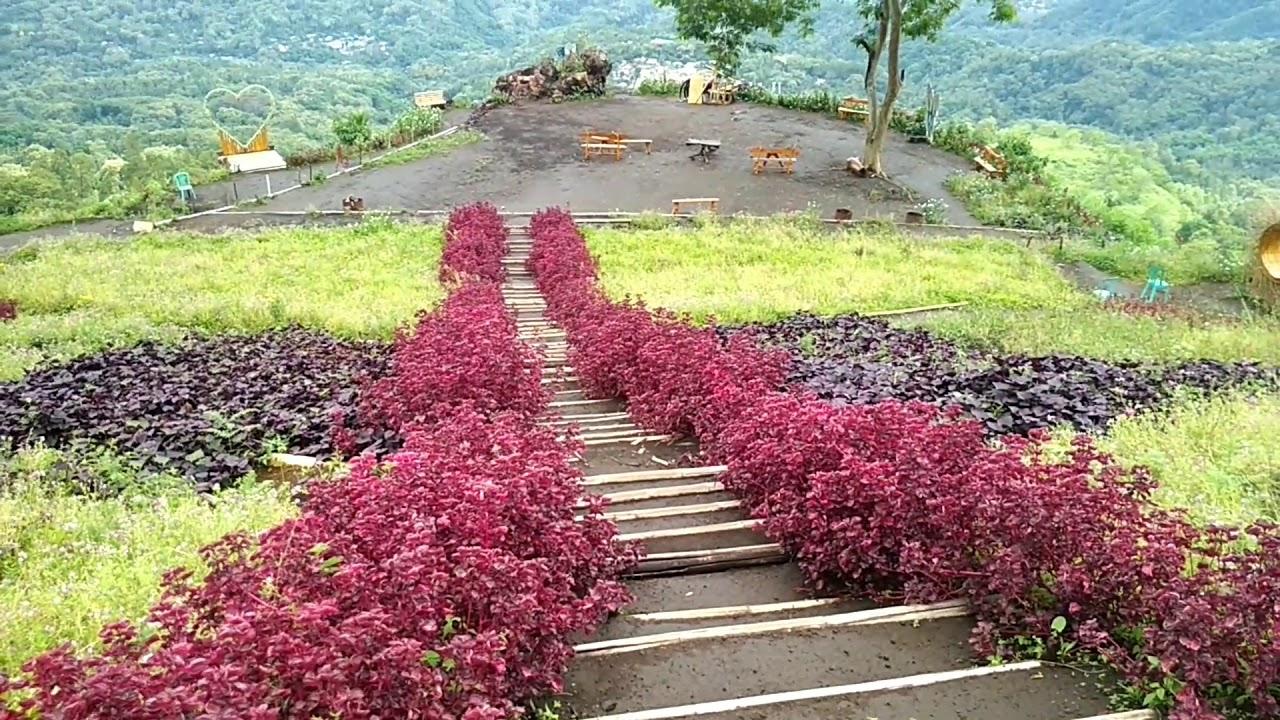 Wisata Manulalu Jerebuu - Ngada Bajawa