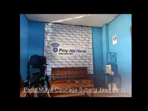 Download Live Streaming pmy net studio