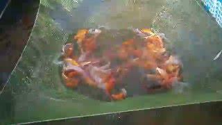 видео Продам рыбу оптом
