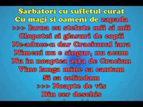 Horia Brenciu - Noapte de Craciun CHRISTMAS KARAOKE.flv