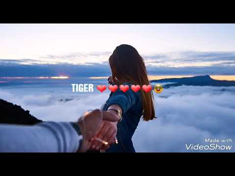 ONLY YOU CAN MAKE ME FEEL THIS WAY ❤️🤓😍..... ⛹️TIGER 🎉