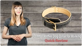 Extra Soft & Comfy Leather Dog Collar for Walking - Royal Gift - Review