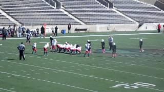 2014 vikings vs Bills Championship