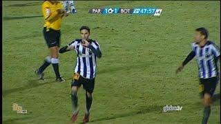 Gols Paraná 1 x 2 Botafogo - Brasileirão 2015 Série B