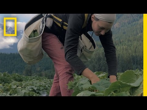 The Call of the Land: Meet The Next Generation of Farmers | Short Film Showcase