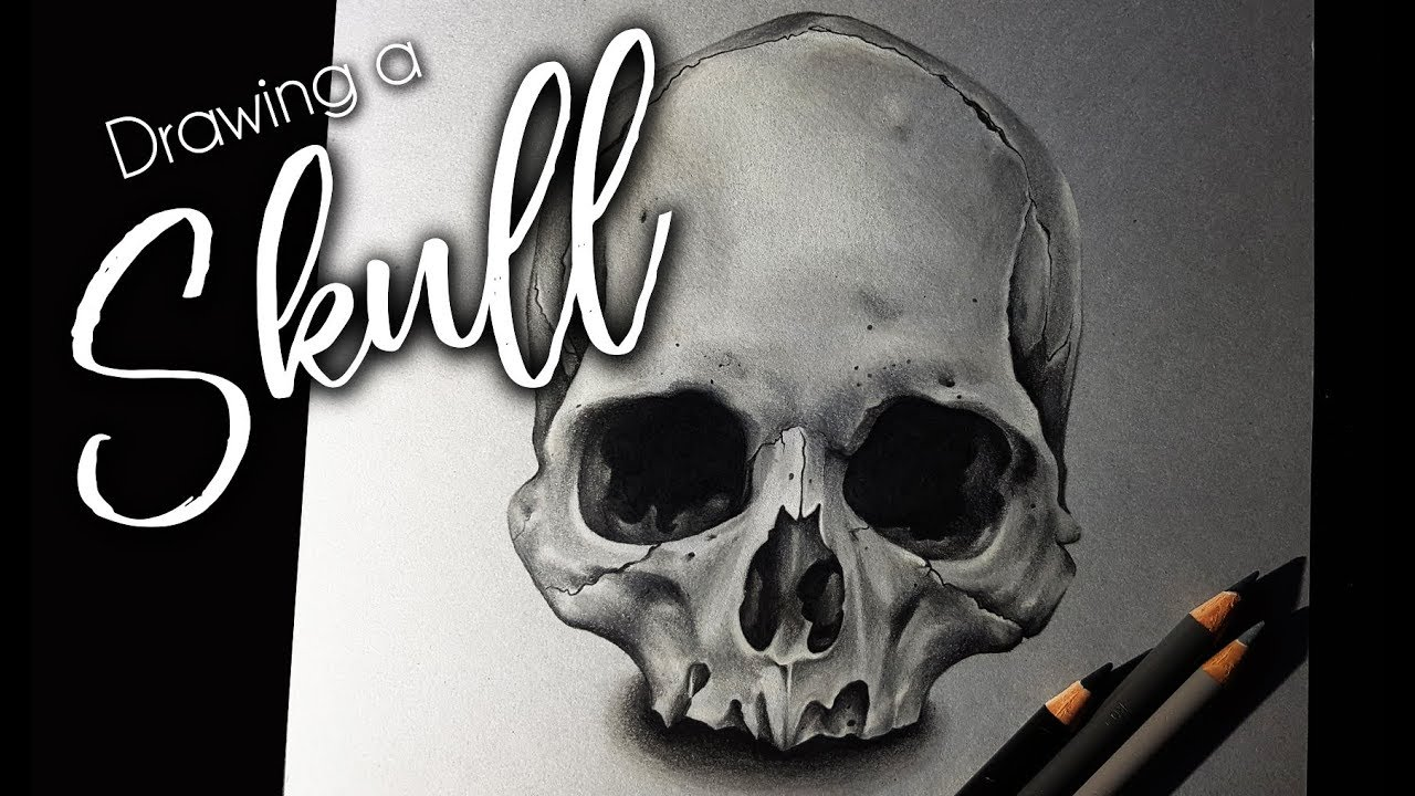 how to draw a sortra realistic skull