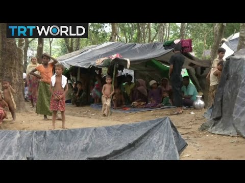 Myanmar Violence: Aid agencies call for urgent help for Rohingya